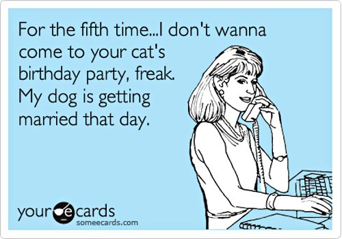 someecards_catbirthdaydogwedding_01